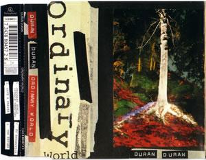1993 Ordinary World