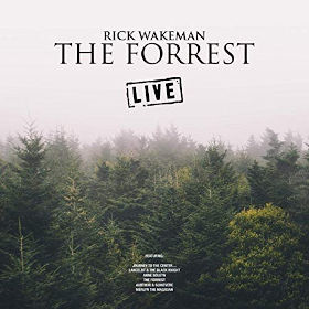 2019 The Forrest (Live)